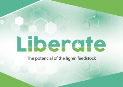 LIBERATE leaflet published!