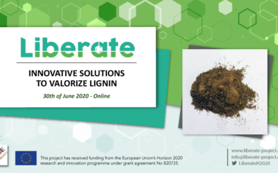 Online Workshop: Innovative Solutions to Valorize Lignin